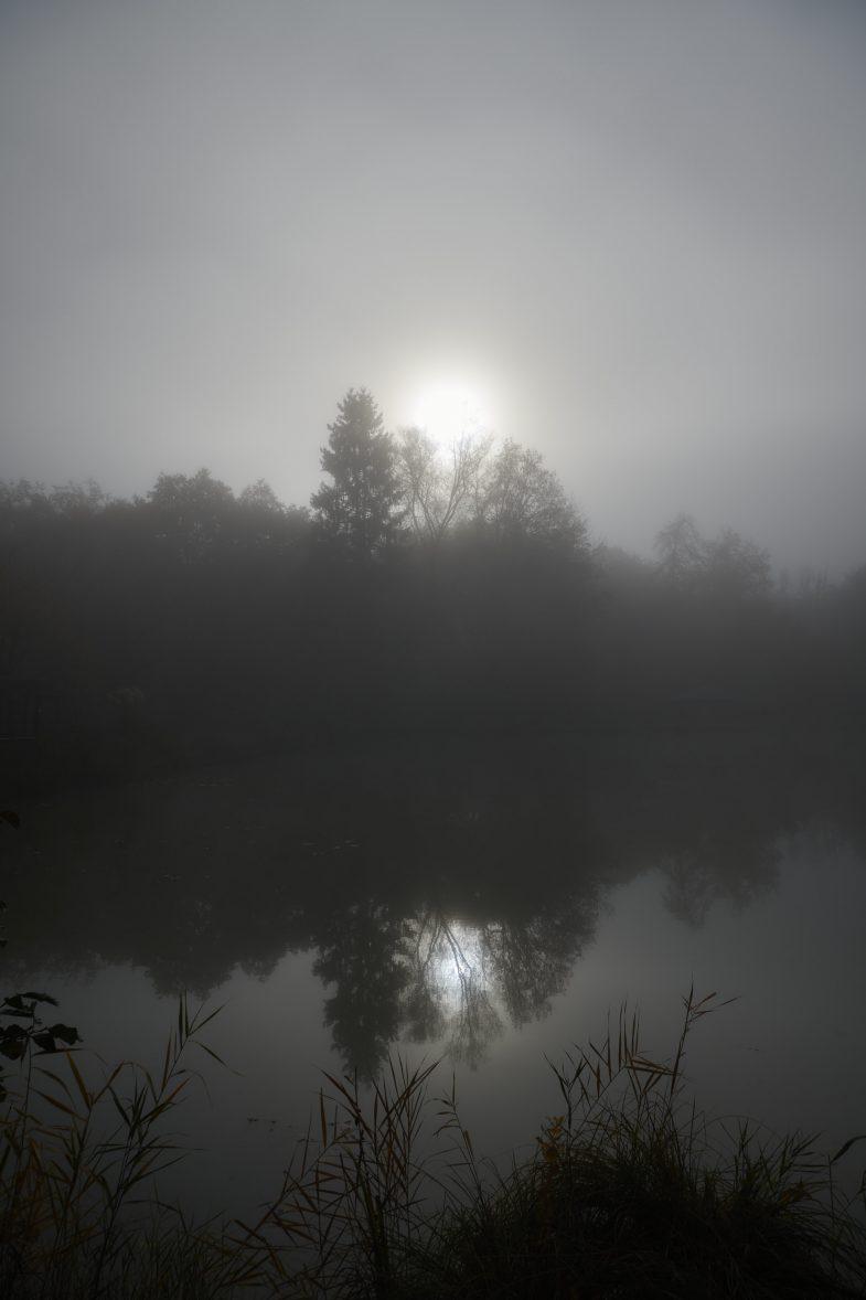 Landschaftsfotografie von Marco Kany: Die Morgensonne im November an einem Weiher in der Nähe von Sitterwald